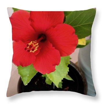 First Bloom Throw Pillow