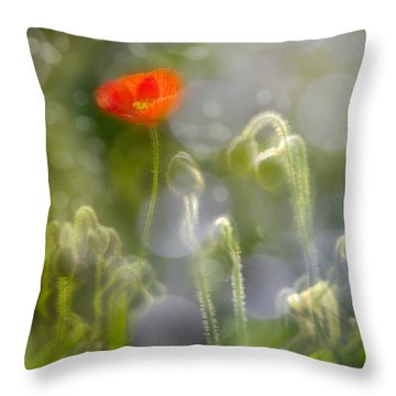 First Burst Throw Pillow