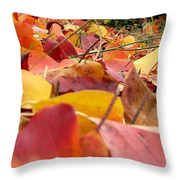 First Day Of Fall Throw Pillow by Andrea Anderegg