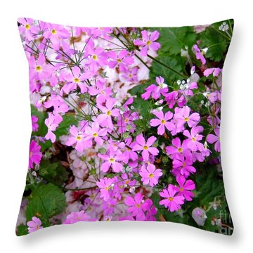 First Day Of Spring Throw Pillow by Andrea Anderegg