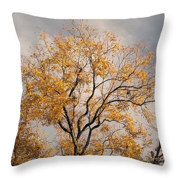 First Day Of Winter 3 Throw Pillow