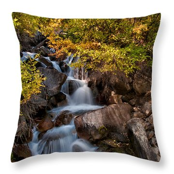 First Falls Throw Pillow by Cat Connor
