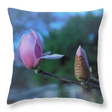First Hints Of Spring Throw Pillow by John Glass