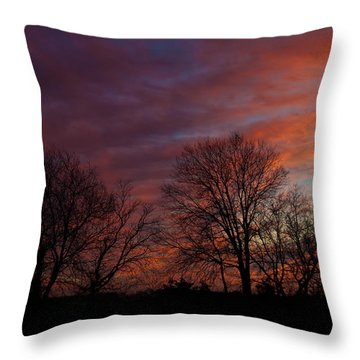 First Light Throw Pillow by Mark Alder