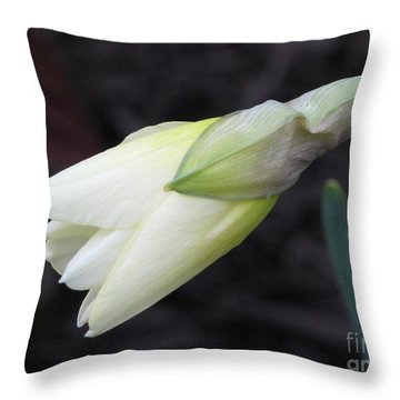 First Light Of Spring Throw Pillow