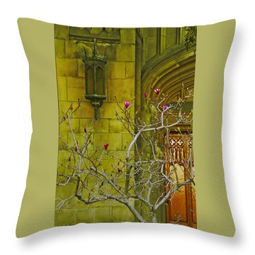 First Methodist Episcopal Church In Pasadena 1923 Throw Pillow by Ben and Raisa Gertsberg