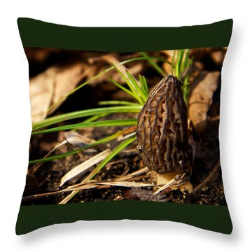 First Morel Mushroom Of Spring Throw Pillow