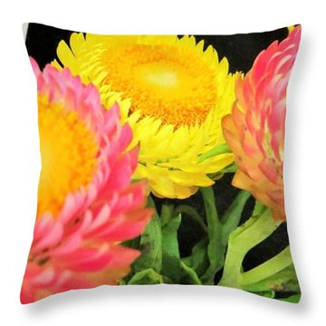 Throw Pillow featuring the photograph First Place At Fair by Jeanette Oberholtzer