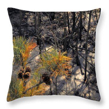 First Sign Of Spring At Cape Henlopen Throw Pillow