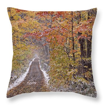 Throw Pillow featuring the photograph First Snow by Alan L Graham