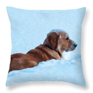 First Snow Bliss Throw Pillow by Bianca Nadeau