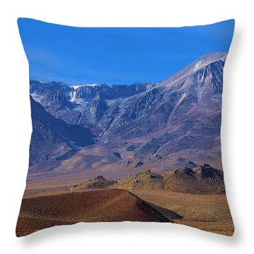 First Snow In Birch Mountain Throw Pillow