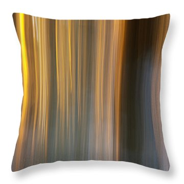 Throw Pillow featuring the photograph First Snow In Sunset by Davorin Mance