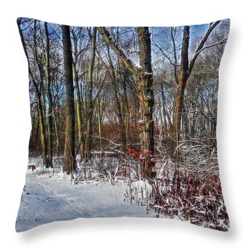 First Snow Of 2015 Throw Pillow by Mikki Cucuzzo