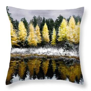 Throw Pillow featuring the photograph Tamarack Under A Painted Sky by Wayne King
