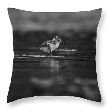 Throw Pillow featuring the photograph   First Steps by John F Tsumas