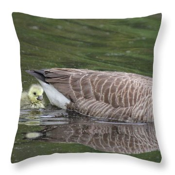 First Swim Throw Pillow by Veronica Ventress