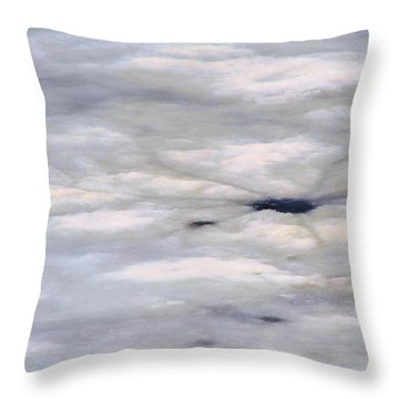 Throw Pillow featuring the photograph First Thaw by Nadalyn Larsen