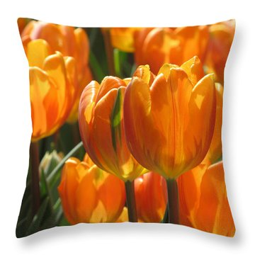 First Tulip Of Spring Throw Pillow by Alfred Ng
