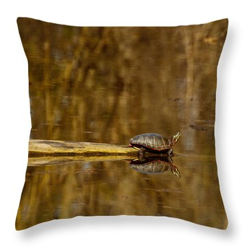 First Turtle Throw Pillow