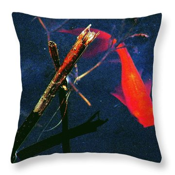 Throw Pillow featuring the photograph Fish Bubble by Faith Williams
