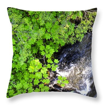 Fish Creek In Summer Throw Pillow by Cathy Mahnke