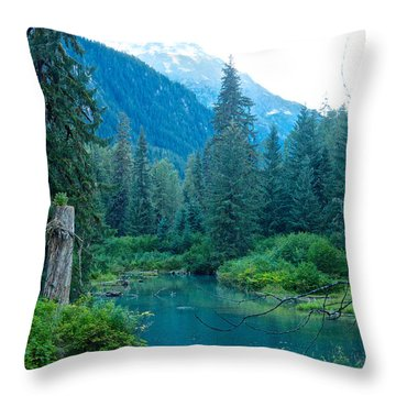 Fish Creek In Tongass National Forest By Hyder-ak  Throw Pillow