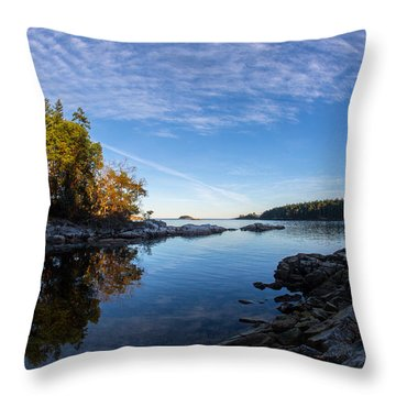 Fish Eye View Throw Pillow