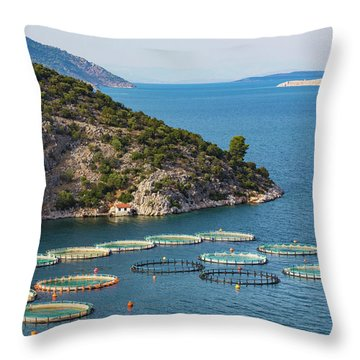 Fish Farming Or Pisciculture Throw Pillow