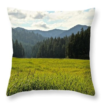 Fish Lake - Open Field Throw Pillow