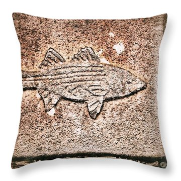 Throw Pillow featuring the photograph Fish  by Patricia Greer