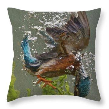 Kingfisher Throw Pillows