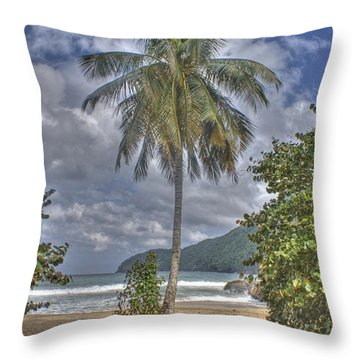 Fisherman's Day Off Throw Pillow by David Birchall