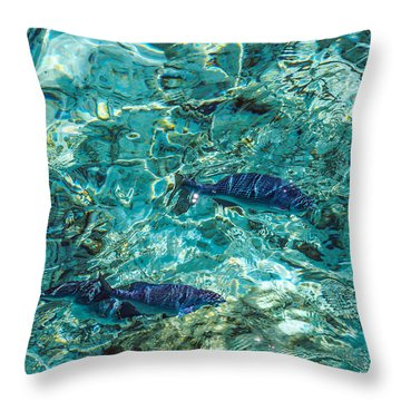 Fishes In The Clear Water. Maldives Throw Pillow by Jenny Rainbow