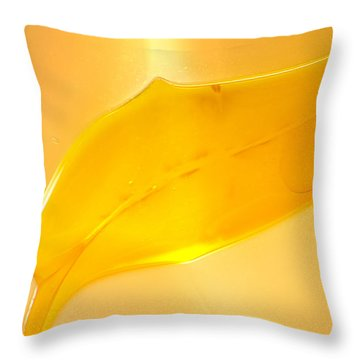 Fishhooks Of Light Throw Pillow by Omaste Witkowski