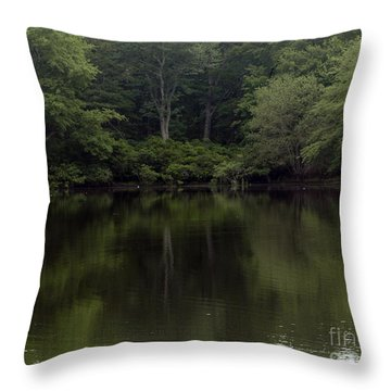 Fishing Adventure Throw Pillow
