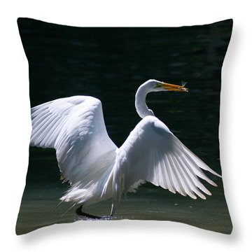 Fishing Egret Throw Pillow