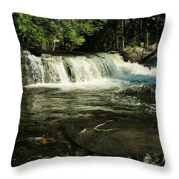 Throw Pillow featuring the photograph Fishing Hole by Sherman Perry