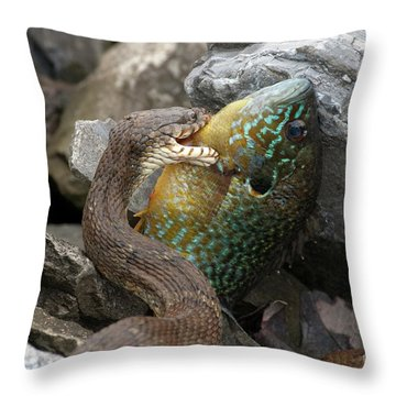 Fishing Throw Pillow by Jeannette Hunt