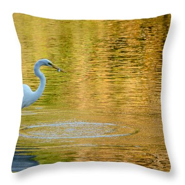 Fishing Throw Pillow by Wade Brooks