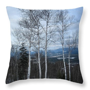 Five Birch Trees Throw Pillow
