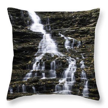 Fl Ricketts Falls Throw Pillow