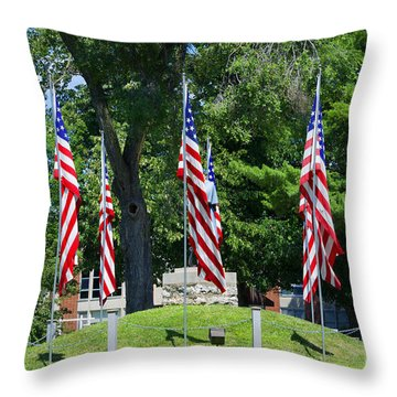 Flag - Illinois Veterans Home - Luther Fine Art Throw Pillow by Luther Fine Art