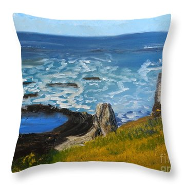 Flagstaff Point  Throw Pillow