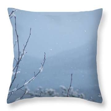 Throw Pillow featuring the photograph Flakes by Brian Boyle