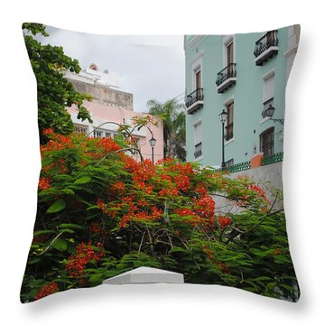 Flamboyan In Park Throw Pillow