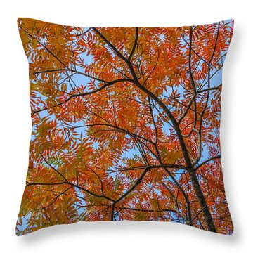Flameleaf Sumac Mostly Changed From Green To Red Throw Pillow