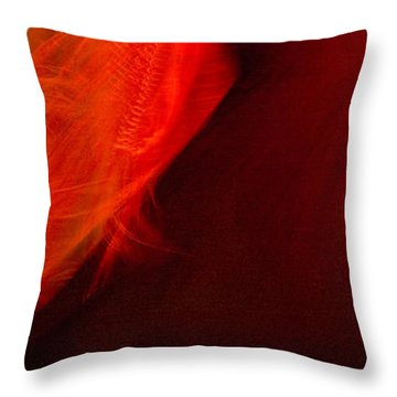 Flamenco Series 10 Throw Pillow