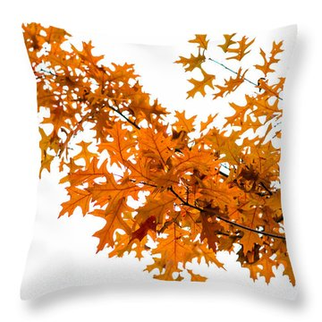 Flames Of The Season - Featured 3 Throw Pillow by Alexander Senin