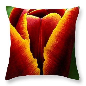 Flaming Heart Tulip Throw Pillow